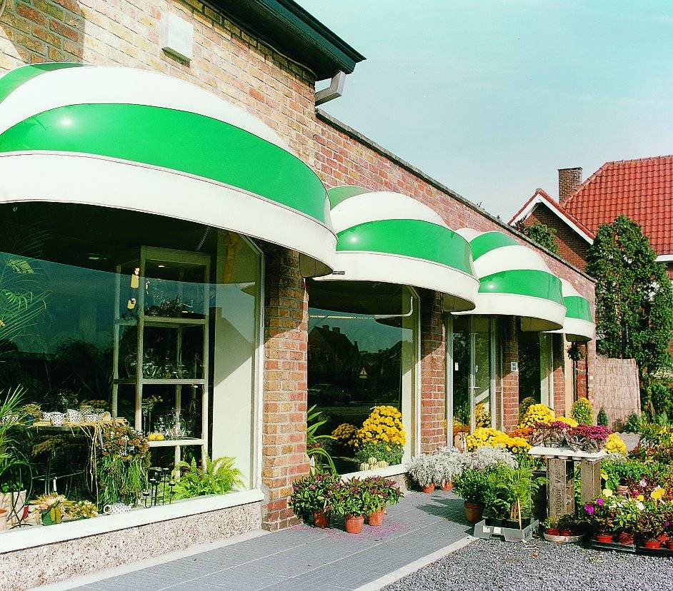 wet look dutchy canopies in white and green stripe
